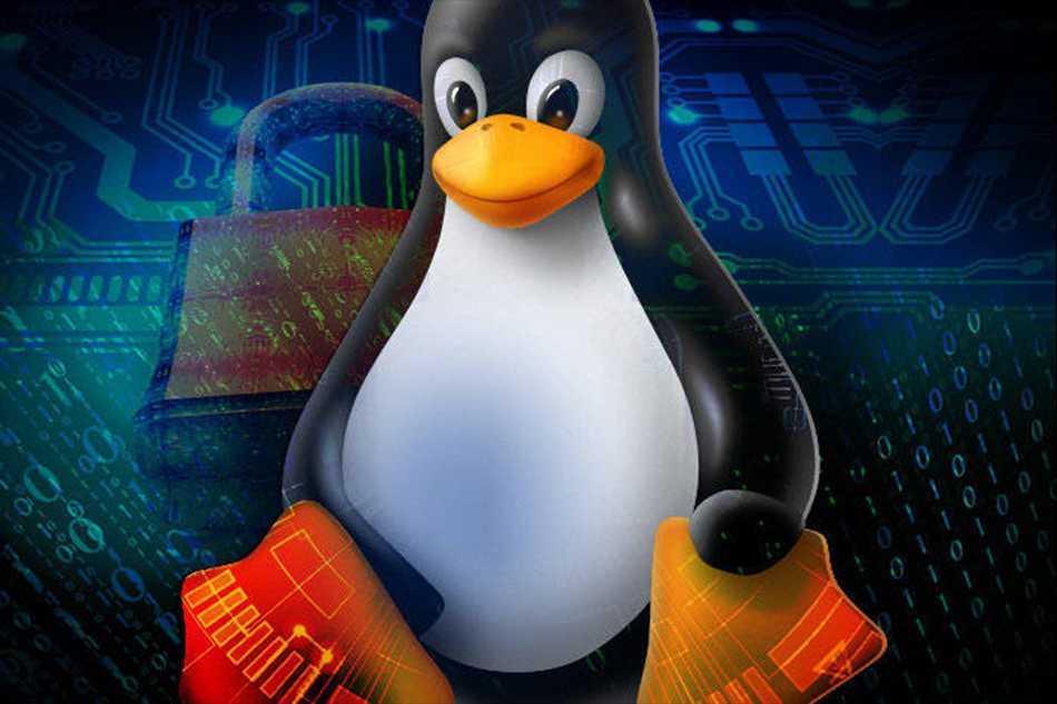 7-Zip: dopo due decenni di esclusiva Windows sbarca finalmente su Linux