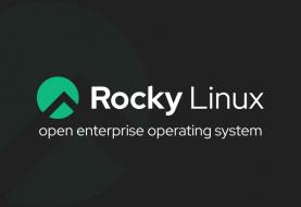 Rocky Linux: il nuovo sistema operativo sarà pronto entro Marzo