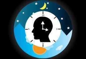 Ciclo circadiano: anche i batteri ne hanno uno