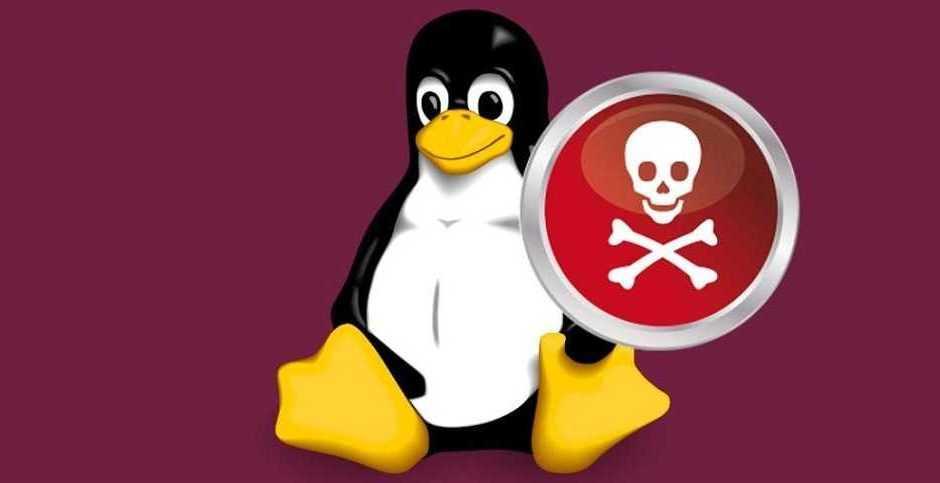 Linux: scoperto un nuovo grave malware