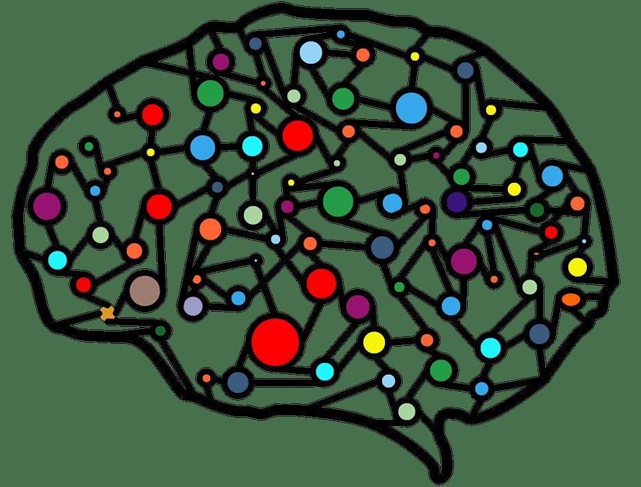 Epilessia: effetto domino e sincronia cerebrale