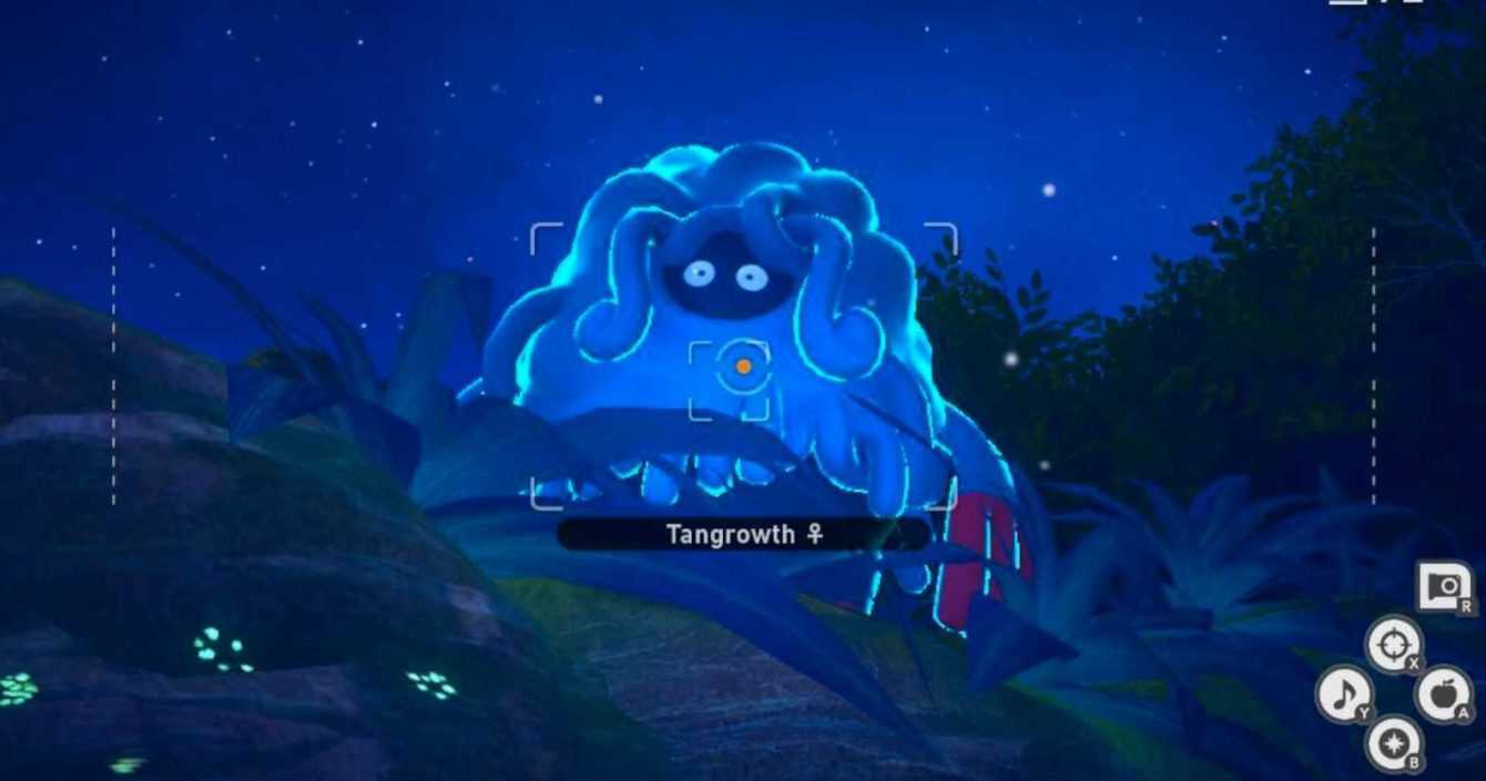 New Pokémon Snap: how to get 4 stars by photographing Tangrowth