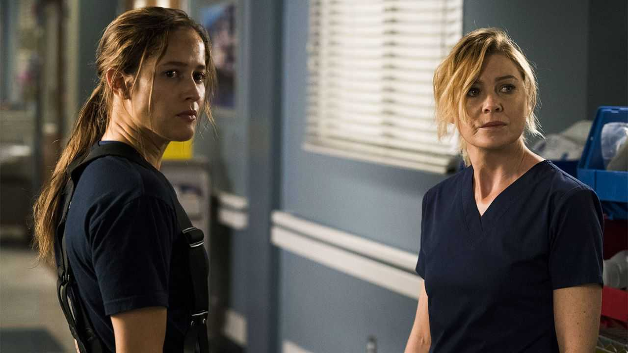 Grey's Anatomy and 9-1-1: from July on Disney + all seasons