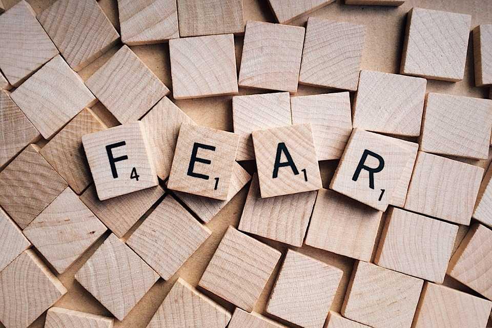 Fobie e paure: quando il cervello va in panne